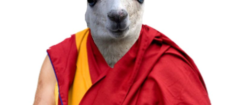 Svelata l'identità del XV Dalai Lama